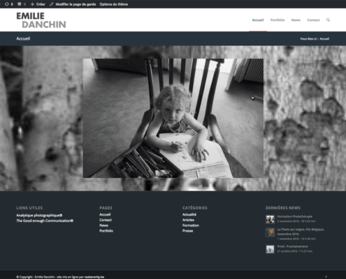 Home Page Emilie Danchin website